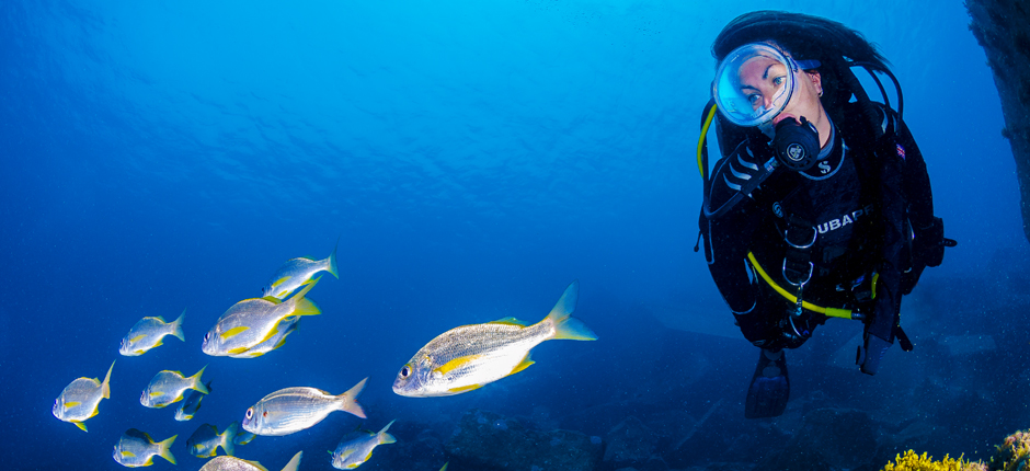 Diving at Sardina, in Gran Canaria